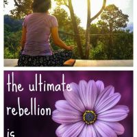 Be The Ultimate Rebel—Meditate!